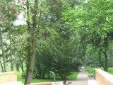 Zelazowa Wola - Le parc près de la maison natale de Chopin