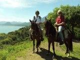 San Pedro la Laguna horses