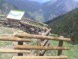 VACANCES - 23/06/2010 - Os de Civis Sentier Bony de Serbella