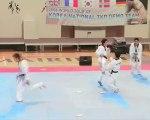 taekwondo démo équipe coréenne à coubertin part 1