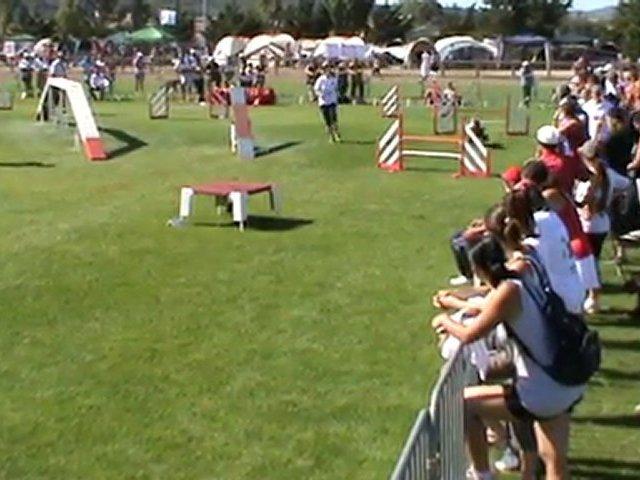 grand prix 2010 trophee