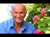 Facts About Alzheimer's Disease Treatment Port Charlotte FL
