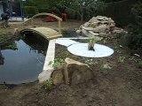 Bassin de jardin 1 par ACCES JARDINS