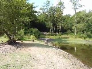 VTT étang Bonnac Beaune P1020342