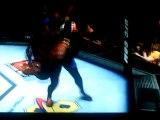 Slam cage UFC 2010