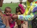 Inondations au Pakistan - Les déplacés du Sindh