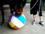 Ulkhan désensibilisation au ballon