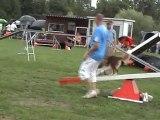 Toul 2010 - Epreuve G.P.F. et Jumping