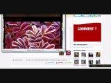 Tutoriel vidéo fait par mercure-de-buges