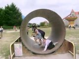 des hamster dans une roue +une grosse merde