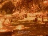 True Blood Saison 3 premières images [Trailer]