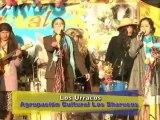Encantos del Peru - carnavales cajabamba 2010 - parte 2