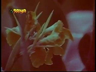 Sannata (1981) - Sun Jaane Jaan - Udit Narayan & Alka Yagnik