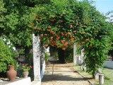 vacances au Portugal 2010
