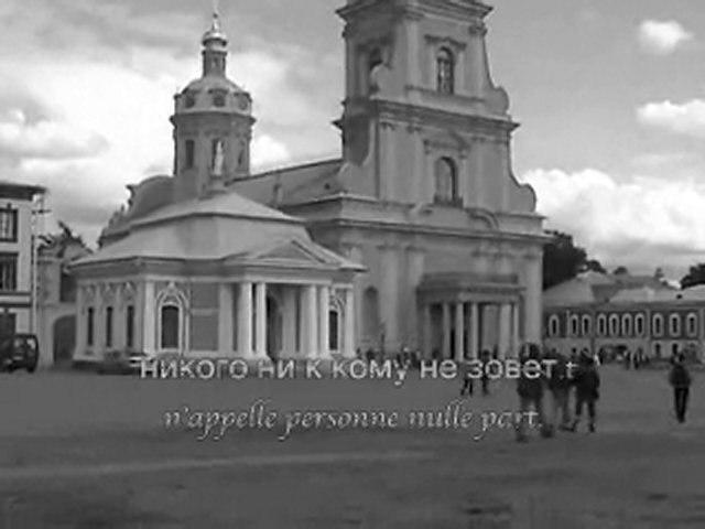 Chien de Petersburg