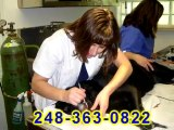 Commerce MI Veterinarians Call 248-363-0822