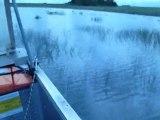 Airboat Everglades Gator Park