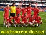 10.Watch fifa football 2010 world cup final stream online