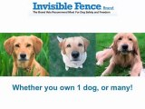 Invisible fence collar San Antonio