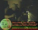 DUB STATION 1 Iration Steppas : Sista Aisha (Nantes 2010)
