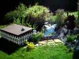 Bassin aquatique jardin