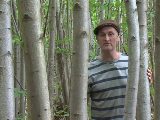 Roundwood Timber Framing DVD Trailer with Ben law