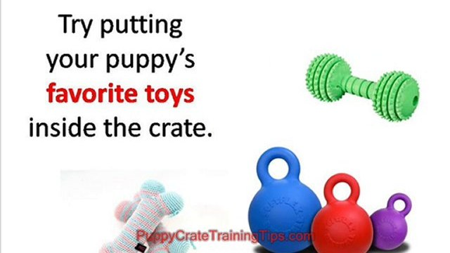 Puppy Crate Training - Choosing the Right Crate for Your Pup