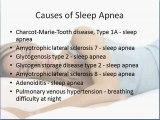 Causes of Sleep Apnea