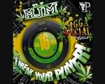 DJ MJM i Break your player ! 16 Sean Paul-Wine it