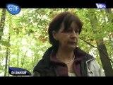 Cueillette & balade en forêt (Montmorency)