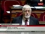 SEANCE,Séance - suite de l'examen du projet de loi de réforme des retraites