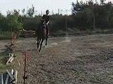 Manon de merval trotteur français  galop