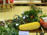 """Le """"troc"""" les légumes et des fleurs......"""