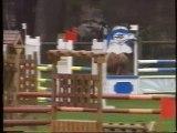 Jingo des ifs. Fontainebleau BIP 2004 C1P