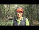 Exploitation forestière : Des chantiers bien balisés