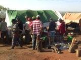 Le maïs transgénique divise au Paraguay