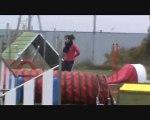 Carla & Cameron Entraînement Agility 14 Octobre 2010