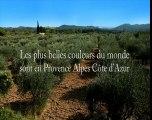 Clip Provence-Alpes-Côte d'Azur numero 2