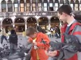 Italy travel: Venices St. Marks Square feeding pigeons, part