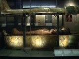 Le papyrus le plus long du monde... 37 mètres!