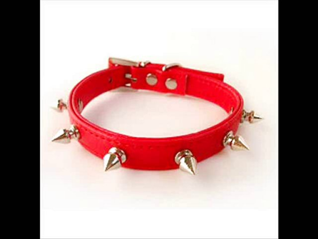 Buy Spiked Leather Dog Collars