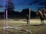 Manon et Ipso Facto en saut .
