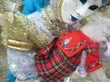 Jupe écossaise pour chienne vétement pour chien PETSHOP