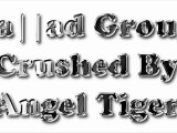 Jallad Group Crushed By Angel Tiger(Tiger Group Rulez New Remix Song 2011)