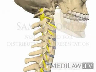 Cervical Spine Movement Rotation physiotherapy patient education animations