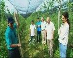 L'agriculture biologique peut nourrir la planète...