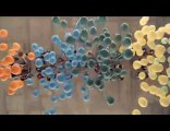 Alphabeat - What Is Happening