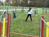 kendra et binkie agility entrainement 20 novembre 2010