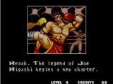 Fatal fury special: Joe Higashi