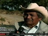 Deforestación en La Malinche, uno de los pulmones más importantes de México